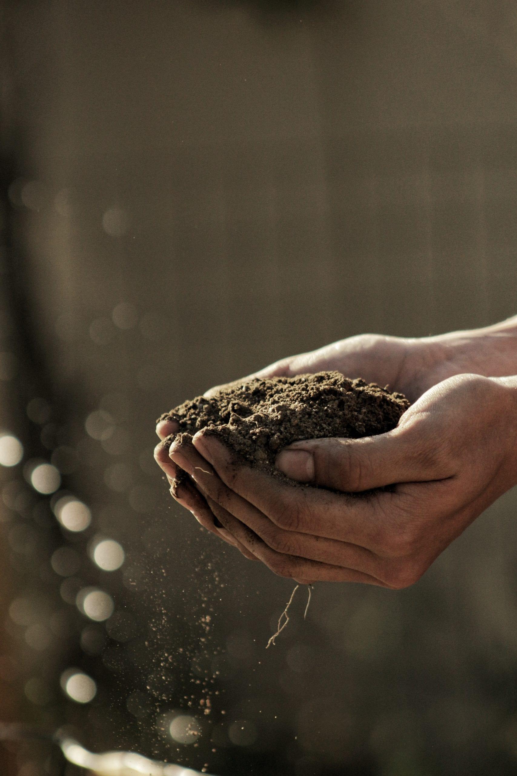 Светът зависи от плодородието на почвата! как да практикуваме No-Till технологията