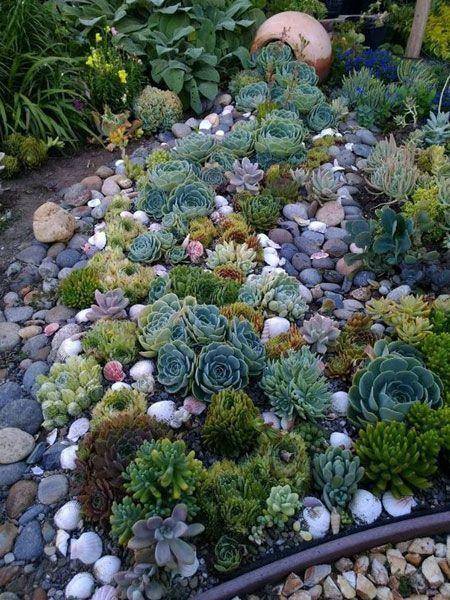 Още един много добре изглеждащ алпинеум за нашата градина.