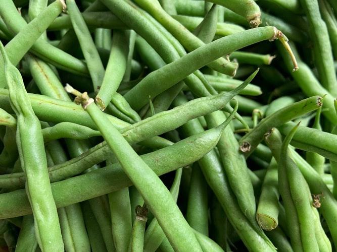Как да консервираме зелен фасул