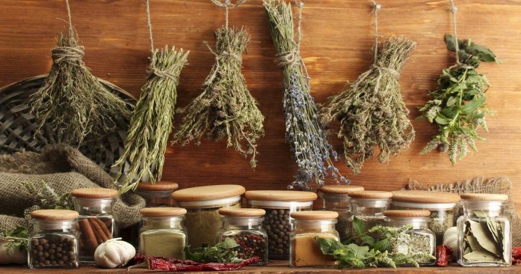 Как да лекуваме нервите с билки? Как да успокоим нервите с билки?