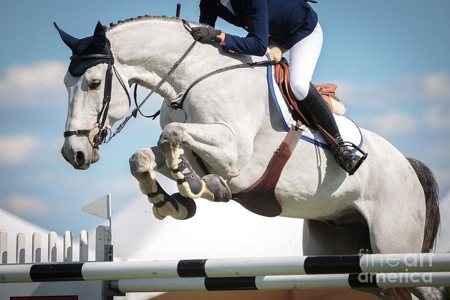 Скачане на кон - най-високият скок