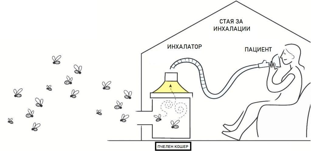 Устройство на пчелния кошер за кошерен въздух