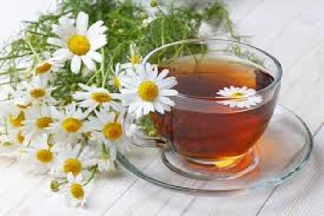 Чай от лайка. Как да излекуваме хемороидите с чай от лайка?