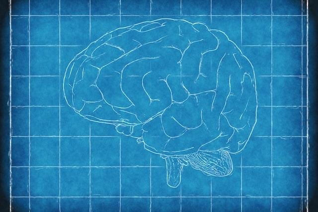 Паметта и вирусите - топ 10 факти за вирусите.