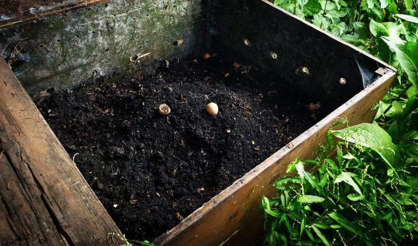 Готов компост - как да направим компост в градината.