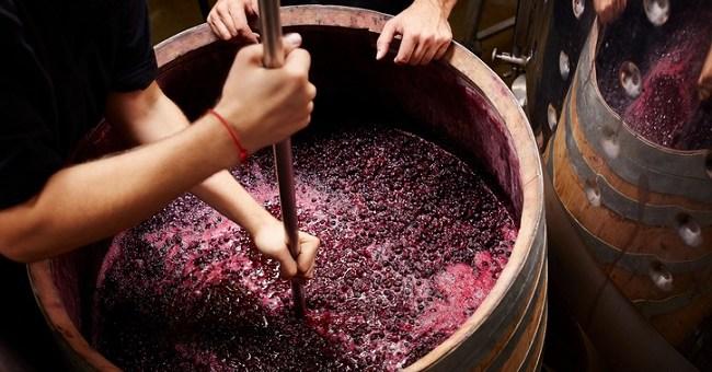 Как да направим качествено домашно вино от грозде
