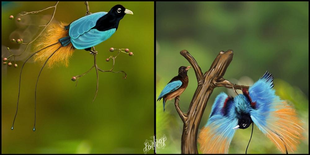 Синята райска птица - най-красивите птици на света.