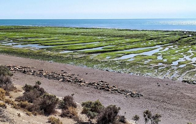 Северна Патагония, Чили - места на които хората не са стъпвали.