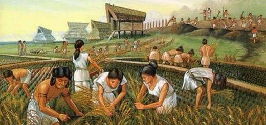 Цивилизацията на олмеките