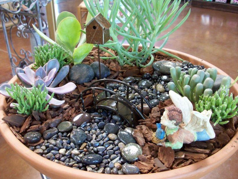 Приказна мини градина от сукуленти