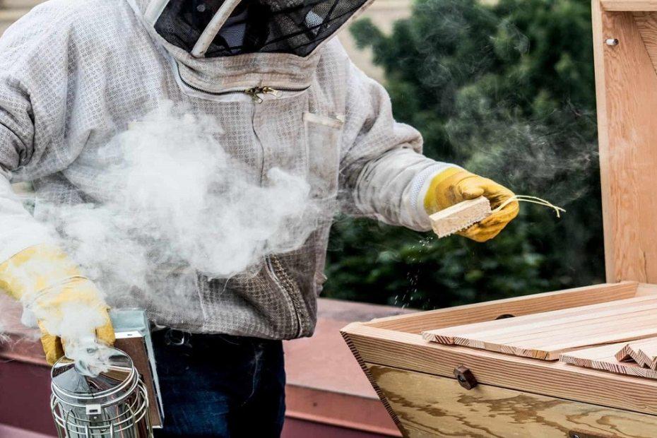 Как да направим домашни разпалки за опушване на пчелите