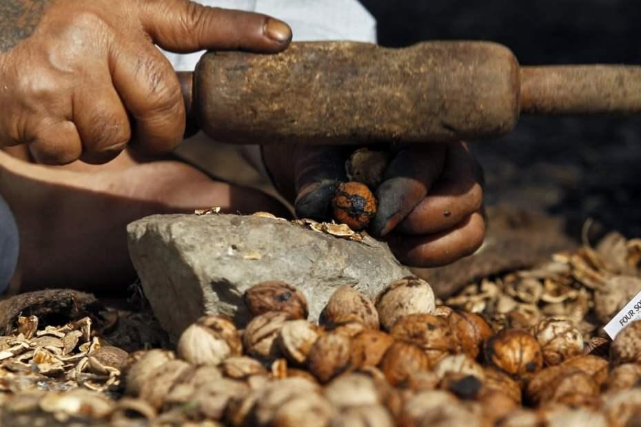 Как да се лекуваме с черупки от орехи
