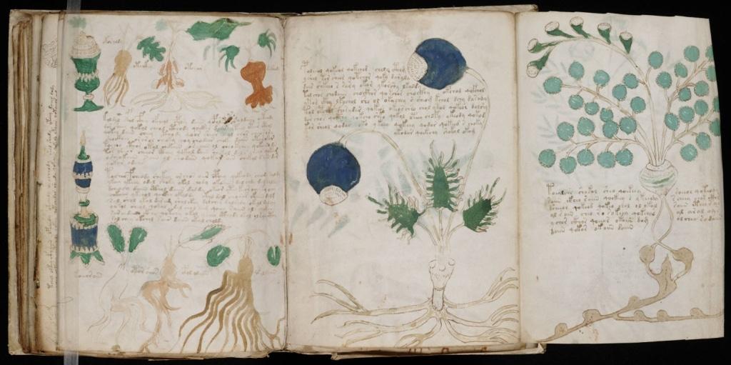 Ръкопис на Войнич  -10 от най-големите неразгадани загадки