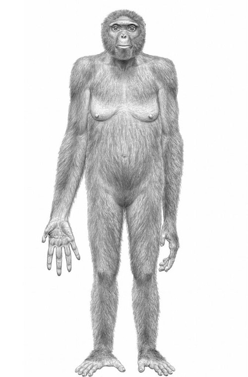 Ускорява ли се еволюцията на човека
