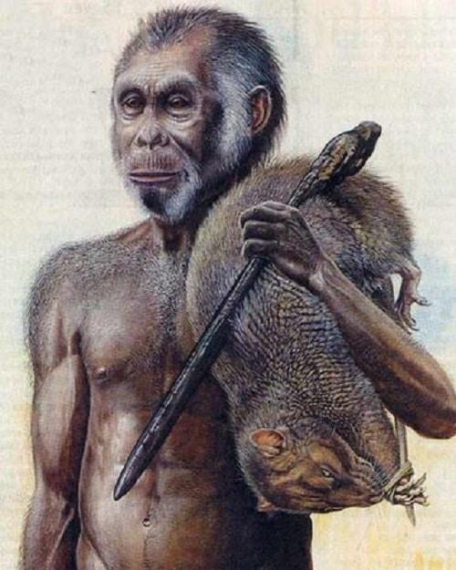 Какво представлява така наречения хобит - 10 мистерии на първите хора