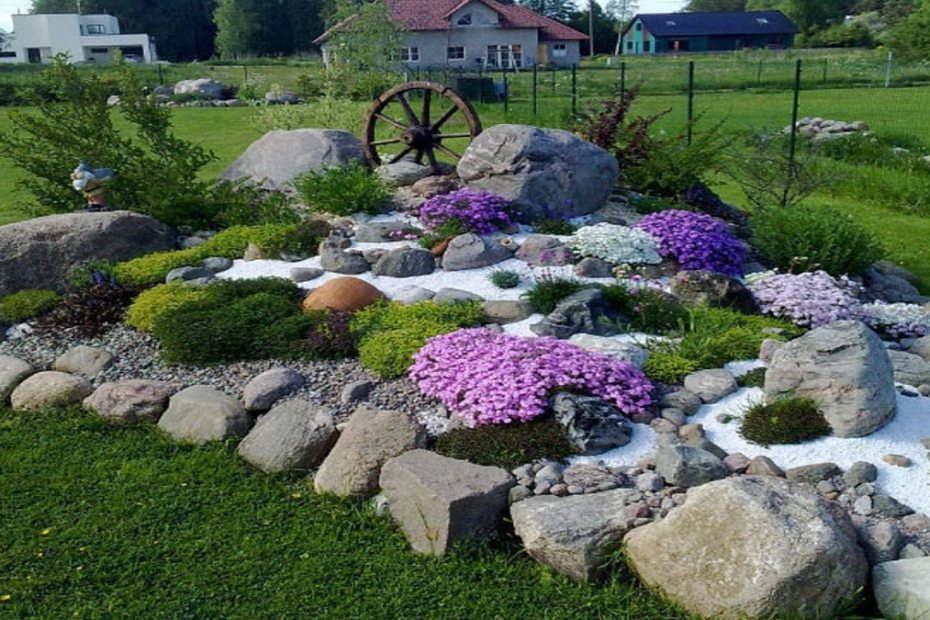Алпинеум - дизайн, идеи и растения - как да се справим сами