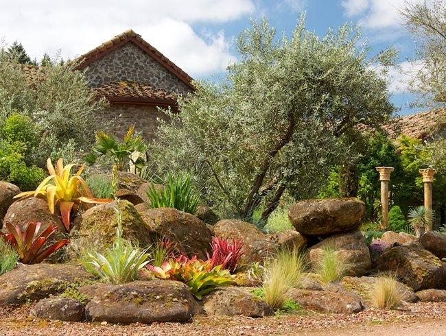 алпинеум - дизайн идеи и растения