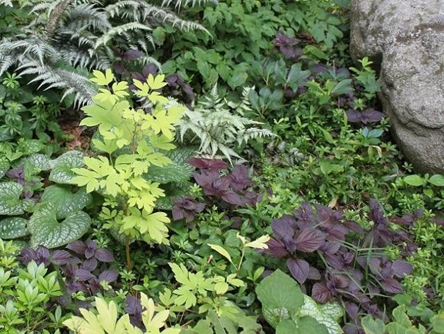Създайте листен гоблен - как да създадем красива градина