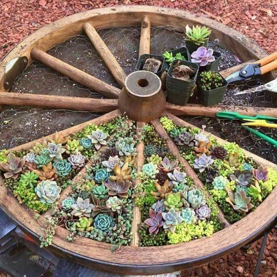 Колелото от каруца е идеално за създаването на насаждения със сукуленти в градината и двора! - как да вдъхнем нов живот на старата каруца