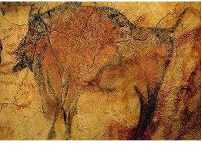 Пещера Колибоая Румъния (32 000 години) - - най-старите пещерни рисунки в света