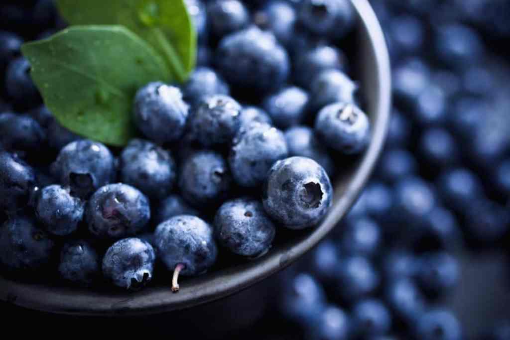Боровинки - ORAC, еквивалент на Trolox, μmol на 100 гр = 2400 - най-богатите на антиоксиданти плодове и зеленчуци