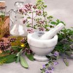 Как да се лекуваме с мащерка - билкови рецепти и съвети