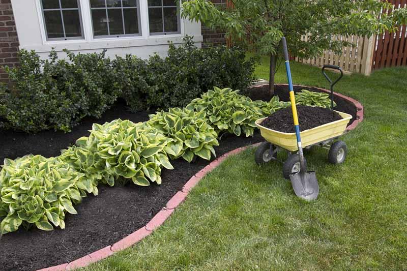 Компост - как да мулчираме растенията в градината