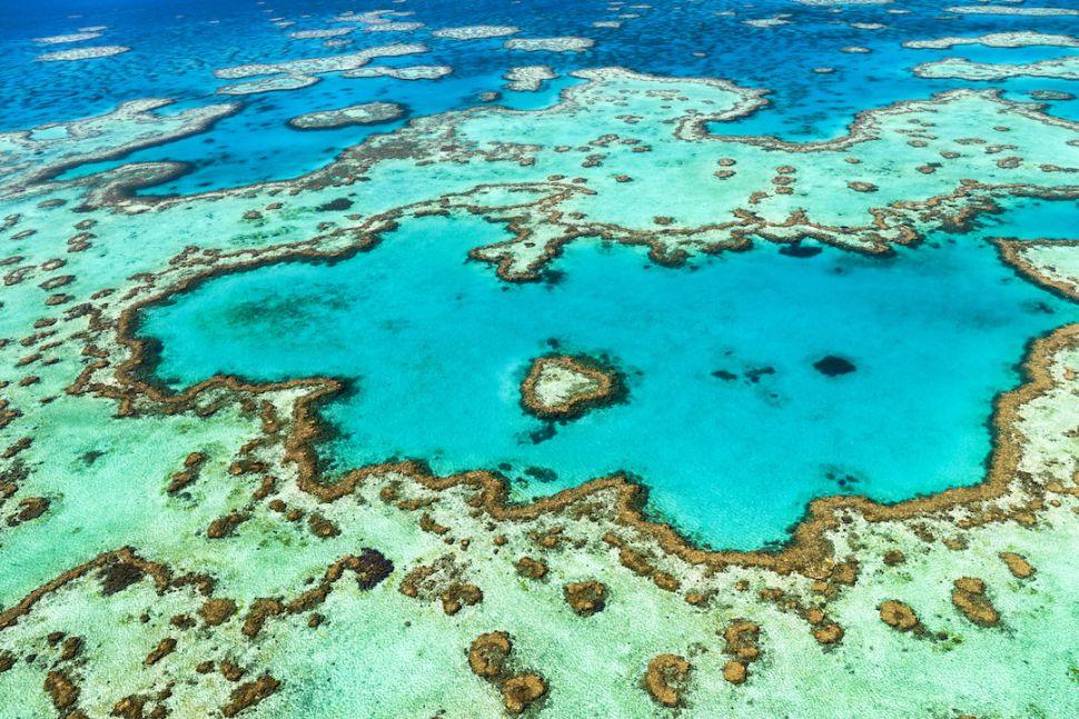 Големият бариерен риф, Австралия - 10 зашеметяващи природни чудеса