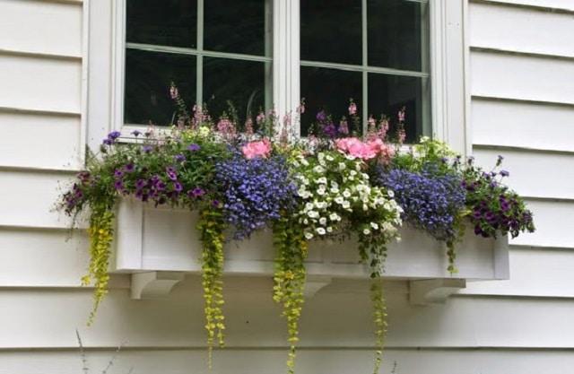 Добавете саксии на прозорците