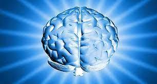 Връзката тяло / ум
