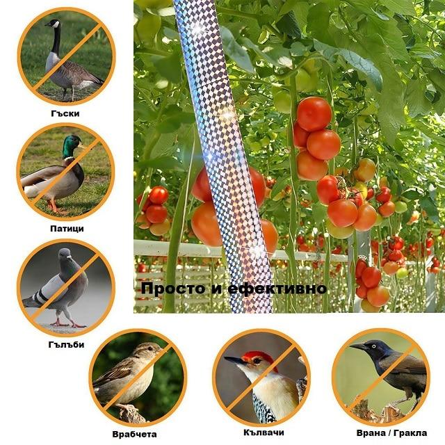 Как да защитим градината и овошките от птици с помощта на светлоотразителна лента