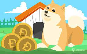 Други неща, които трябва да имате предвид при избора на dogecoin миньор  - как да копаем dogecoin